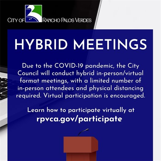 Hybrid Meetings