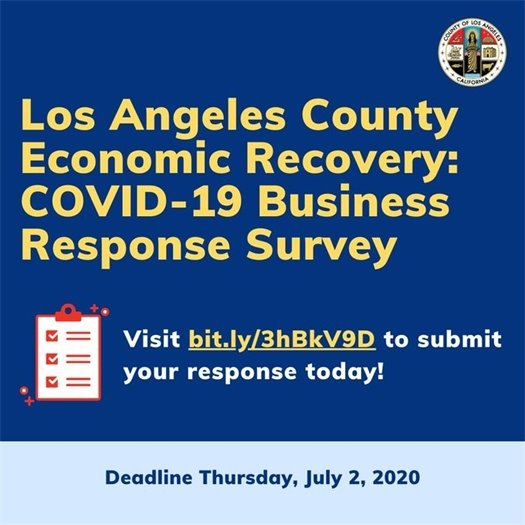 L.A. County Business Survey