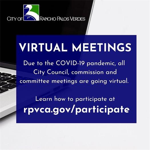 Virtual Meetings due to COVID-19 pandemic