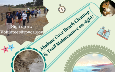 Abalone CoveBeach Cleanup