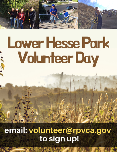 Lower Hesse Park Volunteer Day
